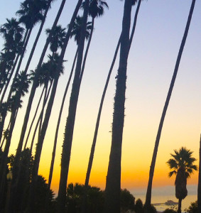Where to Catch the Best Sunsets in Santa Monica