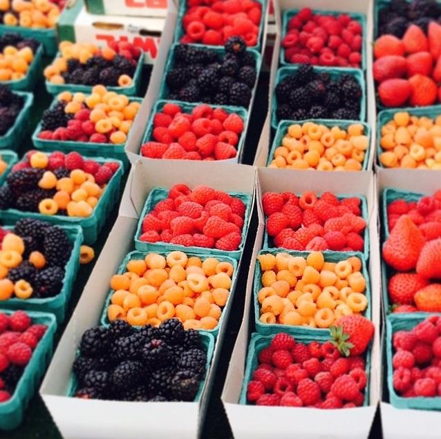 Farmers Market_Instagram