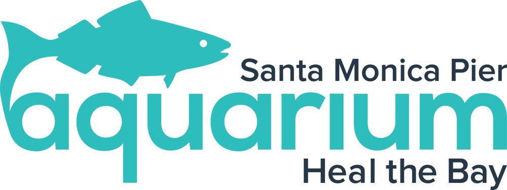 Shark Sundays at the Santa Monica Pier Aquarium