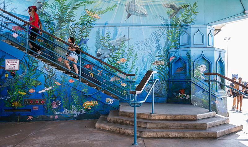 Mural of underwater sea life