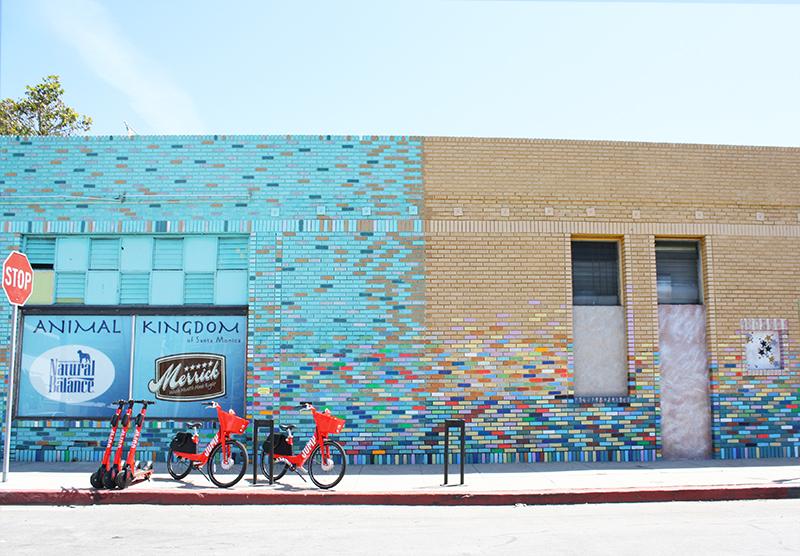 Wall of multi-colored bricks