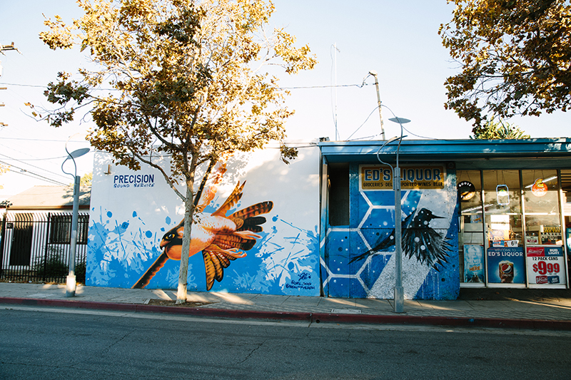 Mural of birds